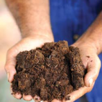 Workshops About Composting and More From Pennsylvania Resource Council